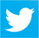 popular STAND Twitter link