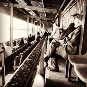 Old men watch non-league football