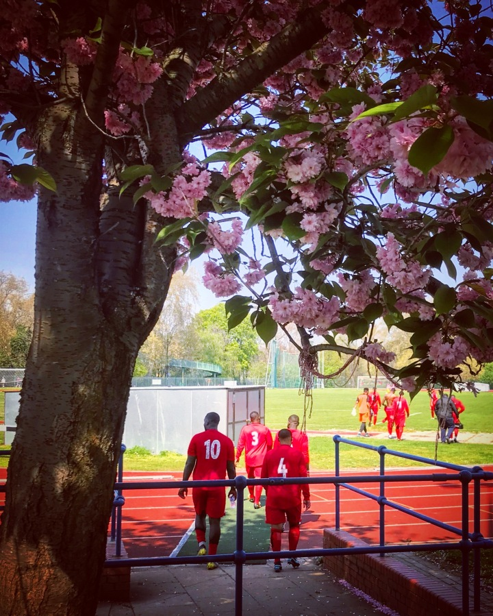 The Lewisham players enter the field beneath tree blossoms ahead of the second half of the Ladywell-classico in Southern Counties League Division One