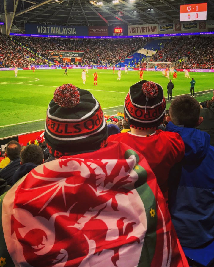 Wales fans watch on during the Euro 2020 qualifier against Hungary